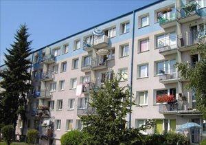 sprzedam mieszkanie Poznań Winogrady, Piątkowo, Winiary