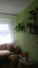 sprzedam mieszkanie Łódź Retkinia