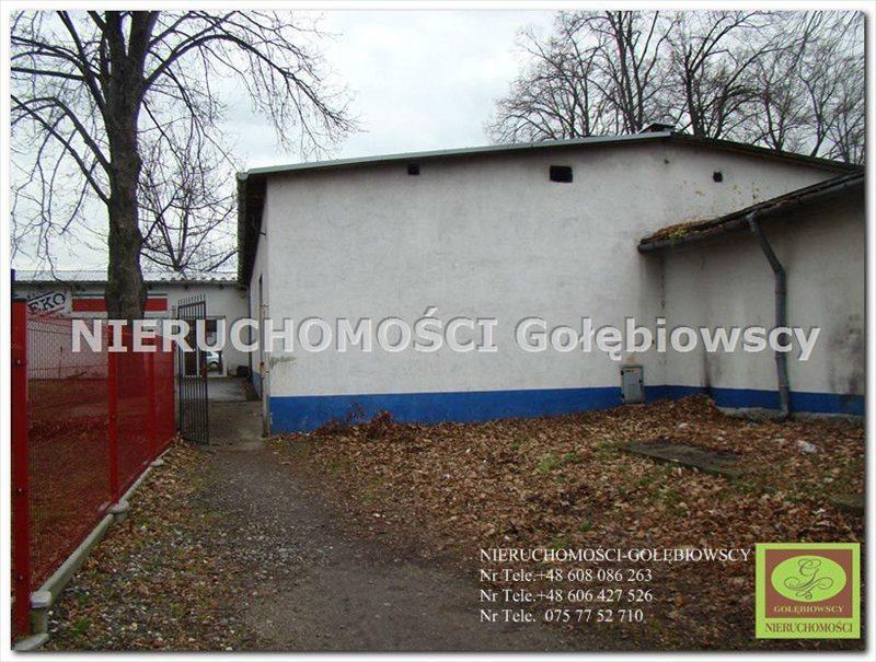 Lokal użytkowy na sprzedaż Pieńsk  455m2 Foto 11