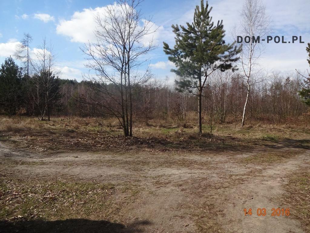 Działka budowlana na sprzedaż Stoczek  10066m2 Foto 1