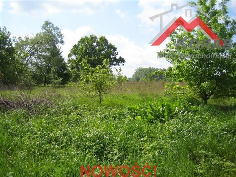 Działka budowlana na sprzedaż Kępa Kiełpińska, Kępa Kiełpińska  8800m2 Foto 1