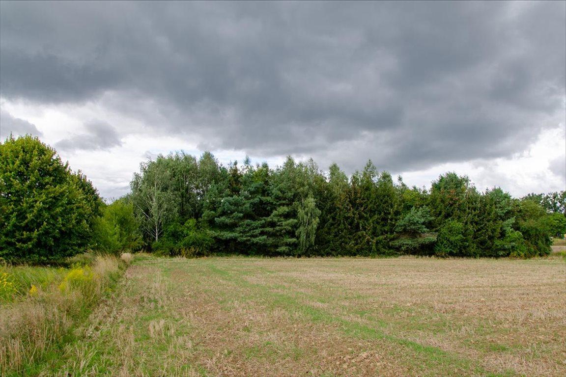 Działka siedliskowa na sprzedaż Wełtyń, Gryfino  18700m2 Foto 3