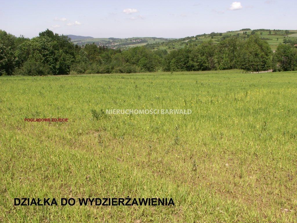 Działka rolna pod dzierżawę Lanckorona  4963m2 Foto 1