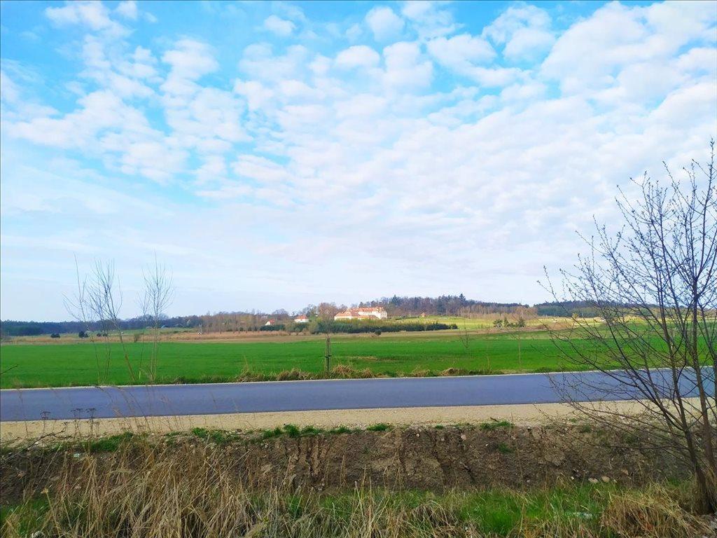 Działka rolna na sprzedaż Rościsławice, Oborniki Śląskie  15861m2 Foto 5