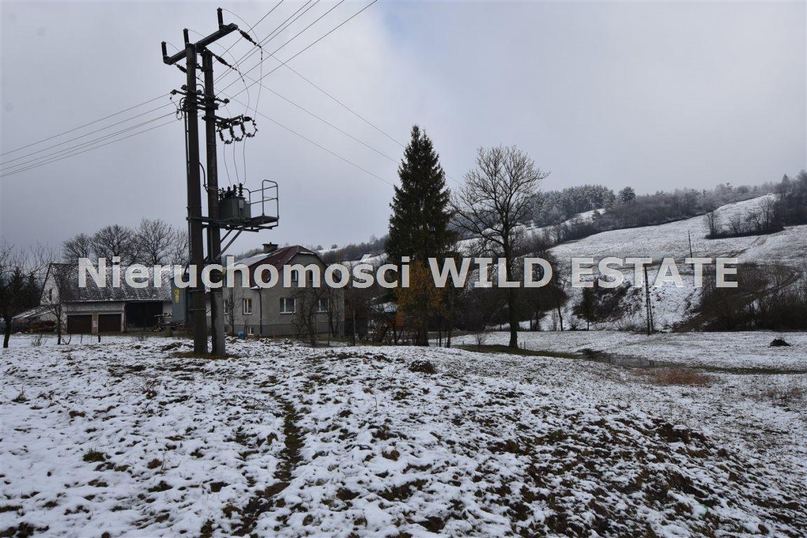 Działka rolna na sprzedaż Paszowa  4002m2 Foto 5