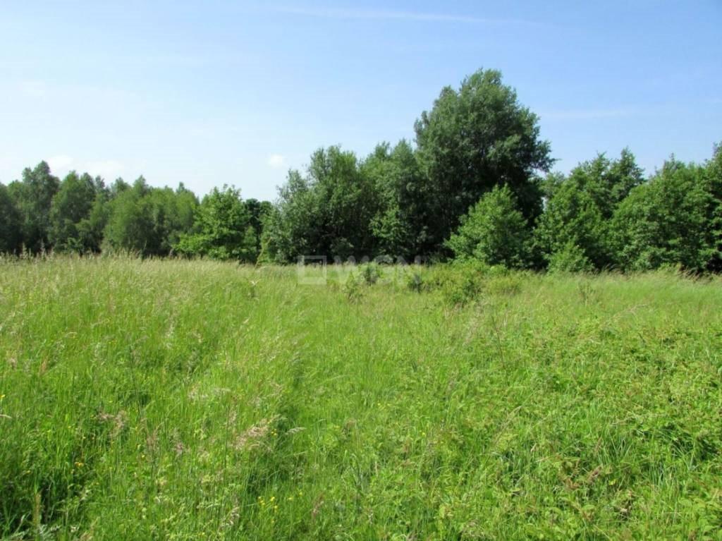 Działka leśna na sprzedaż Harta, Harta, Harta  14266m2 Foto 2