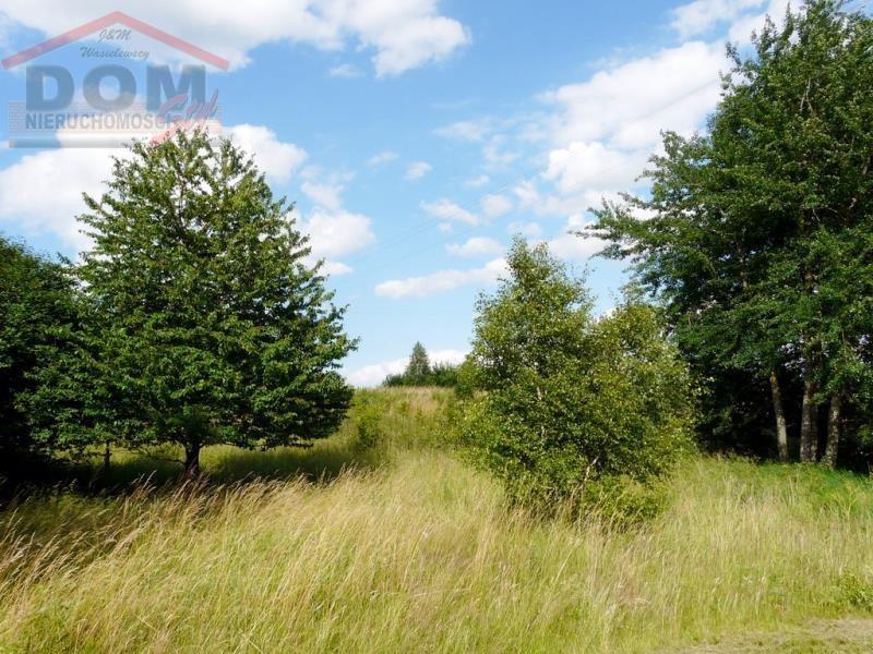 Działka inna na sprzedaż Ostrowice, Jezioro, Kościół, Las, Przychodnia, Przystanek aut  11917m2 Foto 12