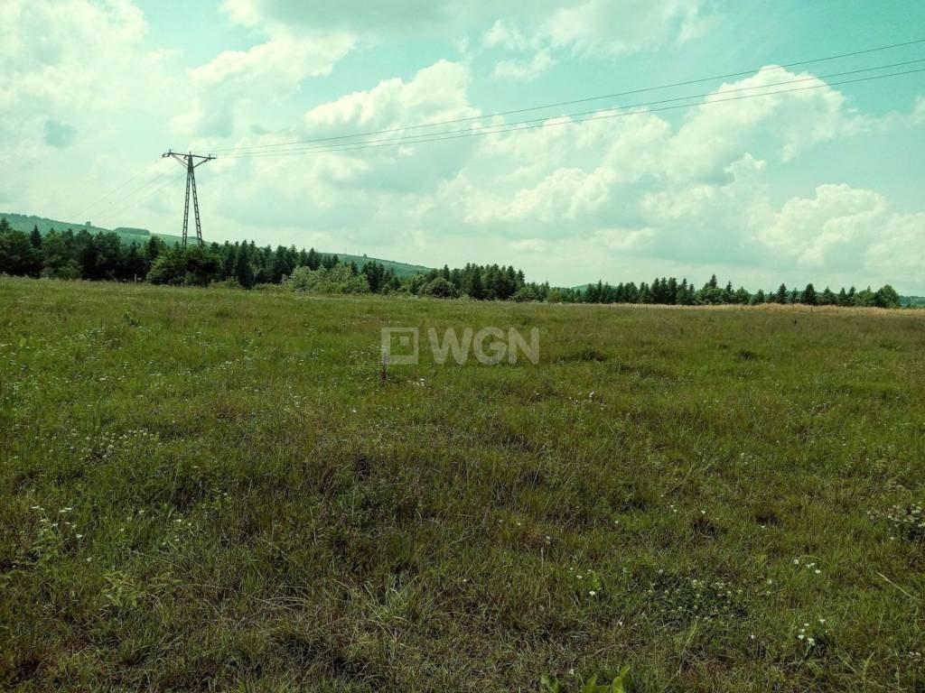 Działka rolna na sprzedaż Dydnia, Dydnia, Dydnia  34100m2 Foto 8
