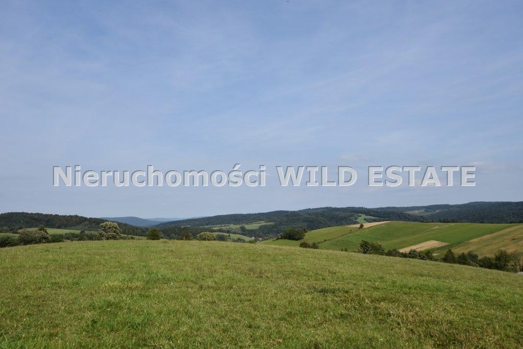 Działka rolna na sprzedaż Baligród, Zahoczewie  180184m2 Foto 7