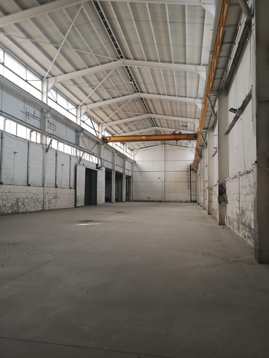 Lokal użytkowy na sprzedaż Mysłowice  1300m2 Foto 5