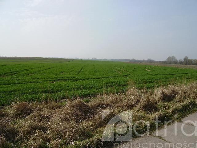 Działka rolna na sprzedaż Ustowo  20000m2 Foto 1