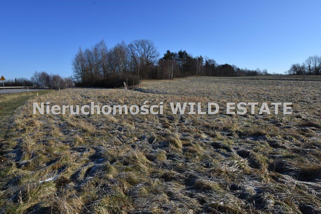 Działka rolna na sprzedaż LESKO, LESKO  8206m2 Foto 5