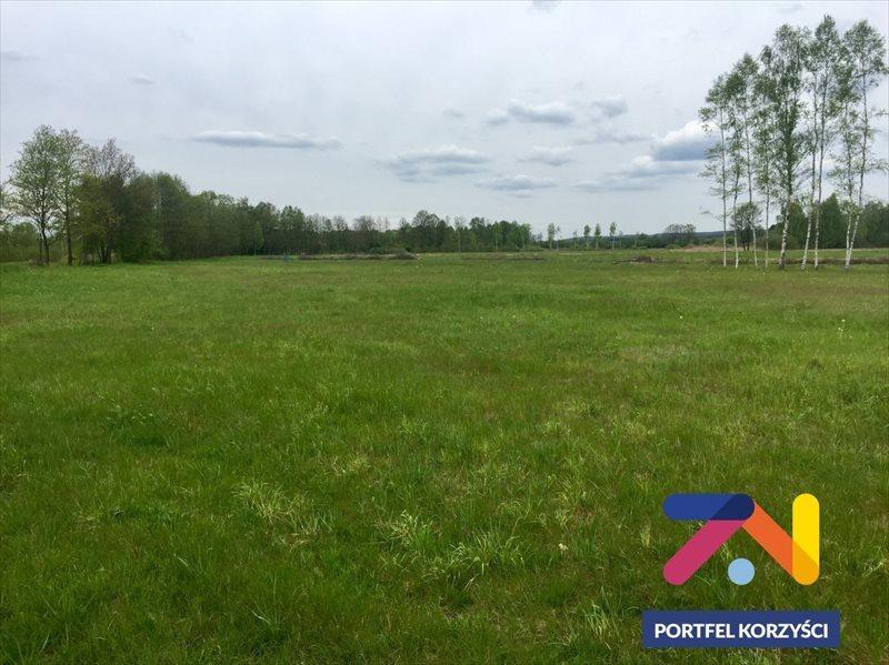 Działka rolna na sprzedaż Świdnica, Łochowo  42400m2 Foto 2