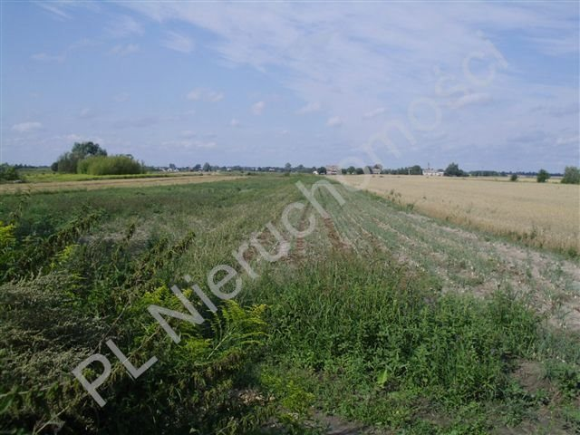 Działka rolna na sprzedaż Milęcin  15762m2 Foto 1
