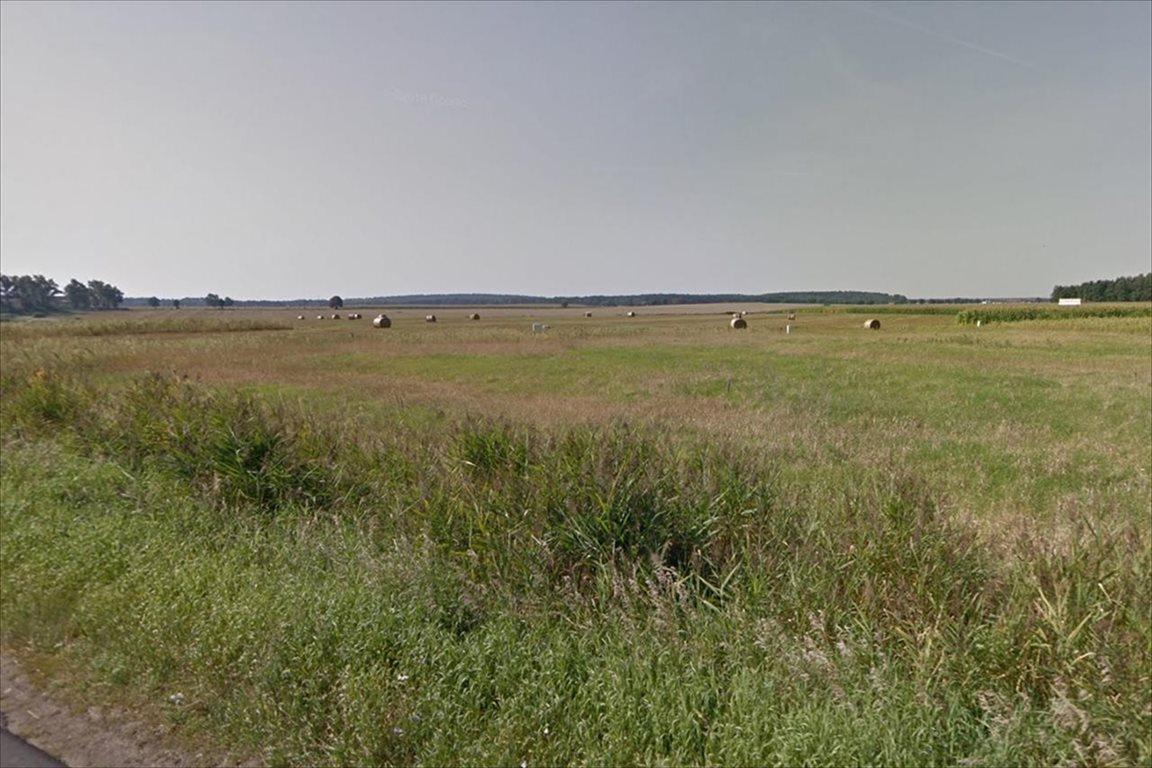 Działka rolna na sprzedaż Dopiewo, Dopiewo  89500m2 Foto 2