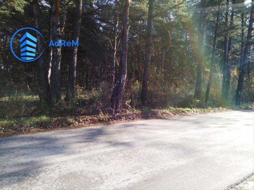 Działka leśna na sprzedaż Jeziórko, Świerkowa  1000m2 Foto 2