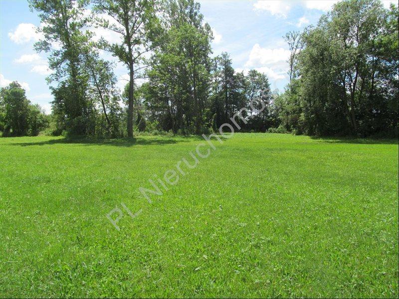 Działka rolna na sprzedaż Szymankowszczyzna  16600m2 Foto 8