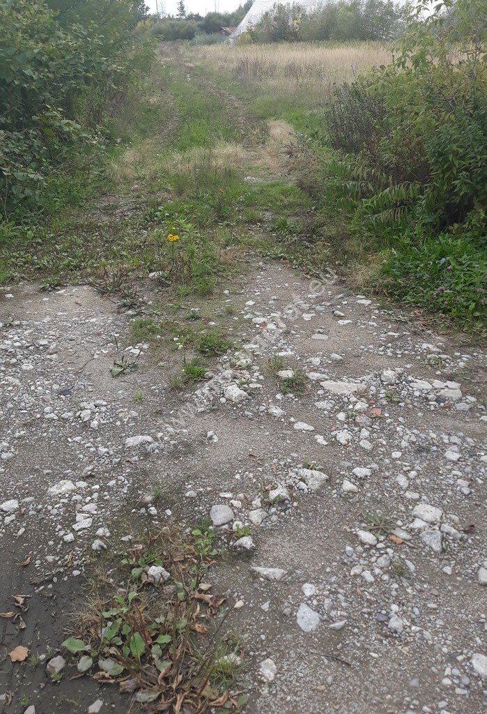 Działka siedliskowa na sprzedaż Piaseczno  6311m2 Foto 3