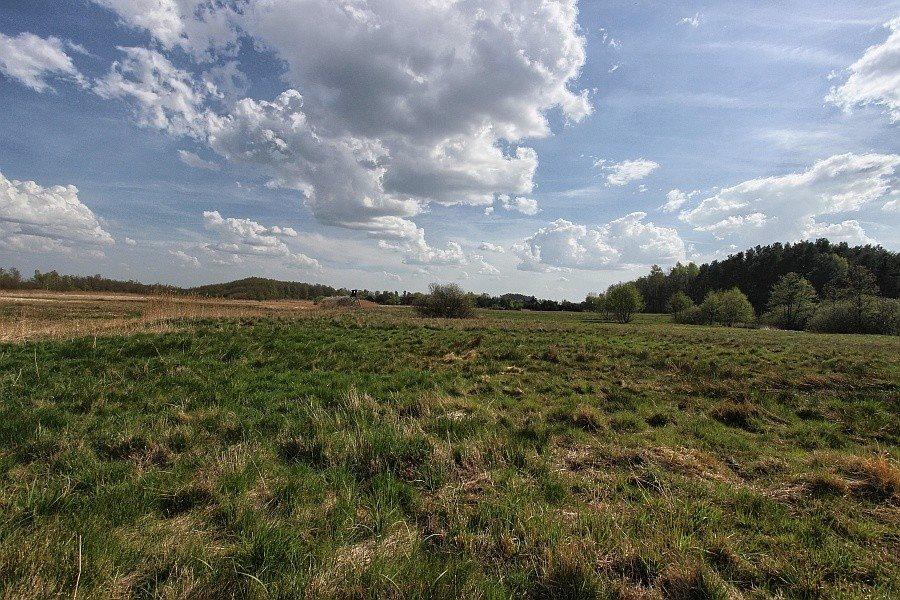 Działka rolna na sprzedaż Kołczewo  22223m2 Foto 5
