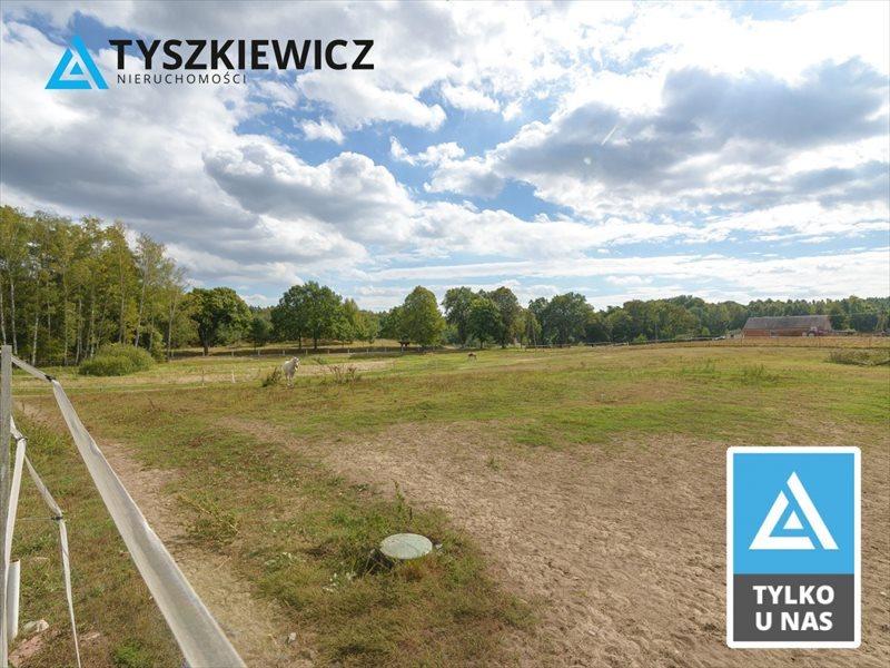 Działka inna pod dzierżawę Boroszewo  38971m2 Foto 1
