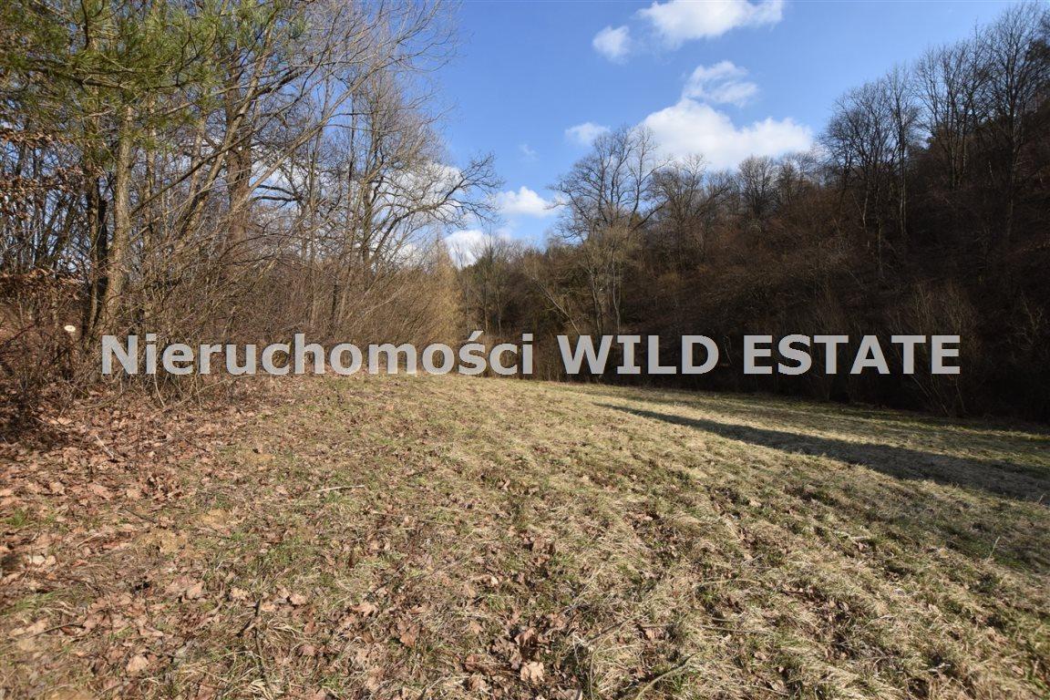 Działka rolna na sprzedaż Solina, Myczkowce  5100m2 Foto 8