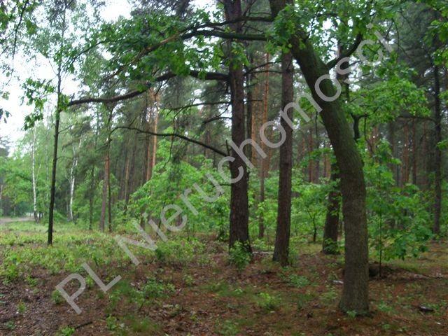 Działka budowlana na sprzedaż Sękocin-Las  2100m2 Foto 1