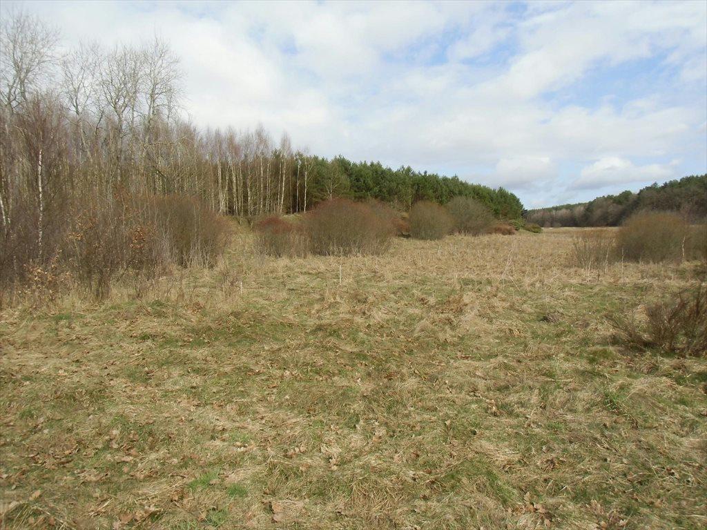 Działka rolna na sprzedaż Tawęcino  136800m2 Foto 9