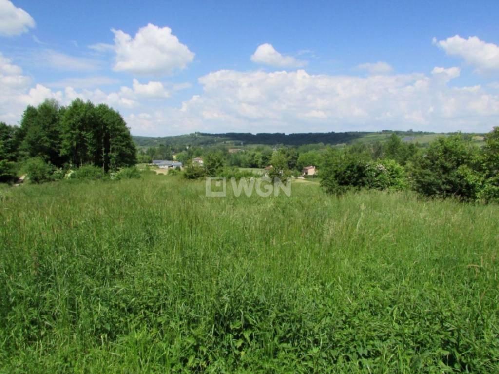 Działka budowlana na sprzedaż Nowy Borek, Nowy Borek, Nowy Borek  7836m2 Foto 3
