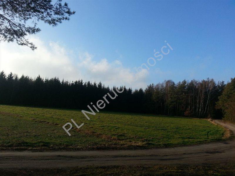 Działka rolna na sprzedaż Zdzieszyn  7700m2 Foto 2