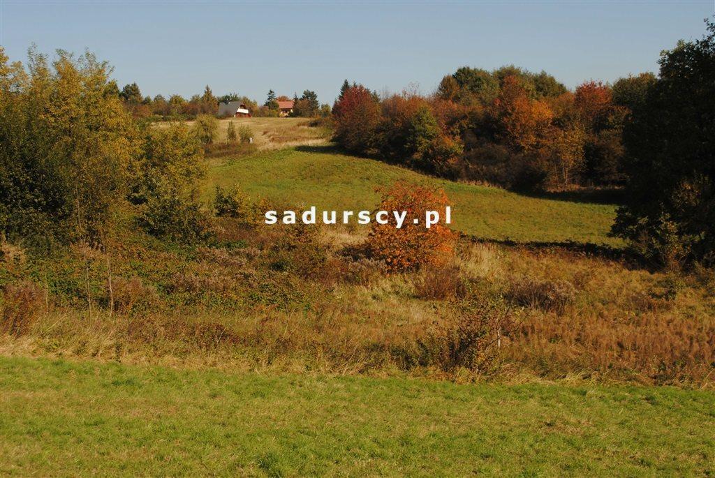 Działka rolna na sprzedaż Kraków, Swoszowice, Rajsko, Golkowicka  2761m2 Foto 5