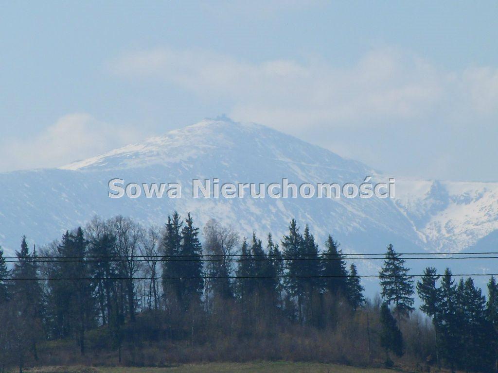 Działka inwestycyjna na sprzedaż Jelenia Góra, Maciejowa  22000m2 Foto 3