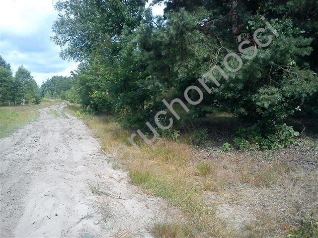 Działka rolna na sprzedaż Stanisławów  18000m2 Foto 3