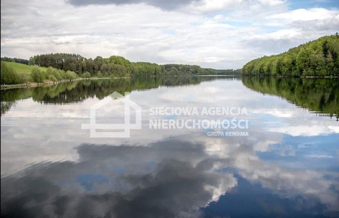 Działka leśna na sprzedaż Nowa Karczma, Kamiony  2605m2 Foto 7