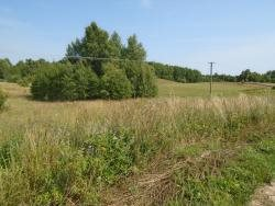 Działka siedliskowa na sprzedaż Galwiecie  16079m2 Foto 4