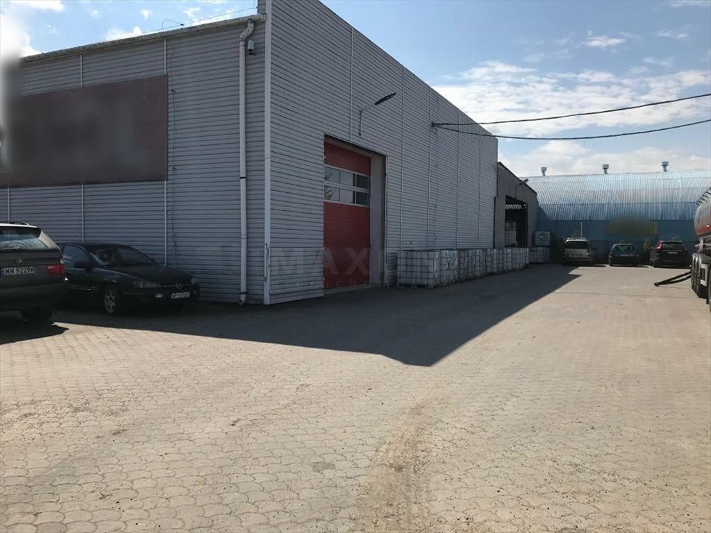 Lokal użytkowy na sprzedaż Opacz-Kolonia, Salomea  1785m2 Foto 2