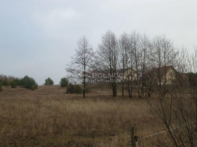 Działka rolna na sprzedaż Ogrodniki Barszczewskie  3076m2 Foto 2