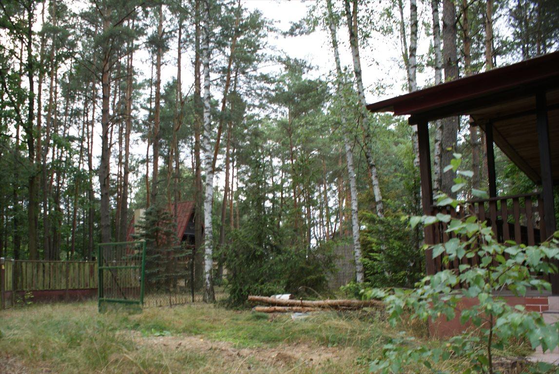 Działka rekreacyjna na sprzedaż Łódź  638m2 Foto 8