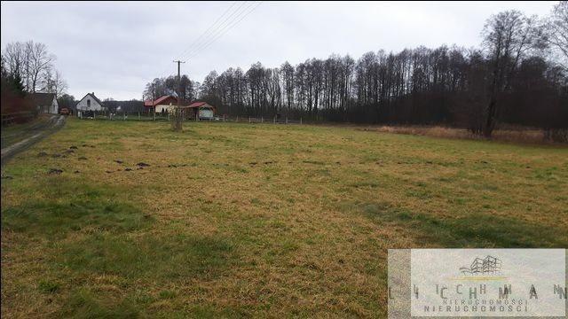 Działka rolna na sprzedaż Wilków  2700m2 Foto 2