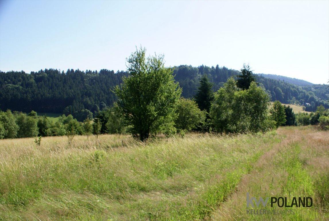 Działka rolna na sprzedaż Kudowa-Zdrój, Pstrążna  14309m2 Foto 11