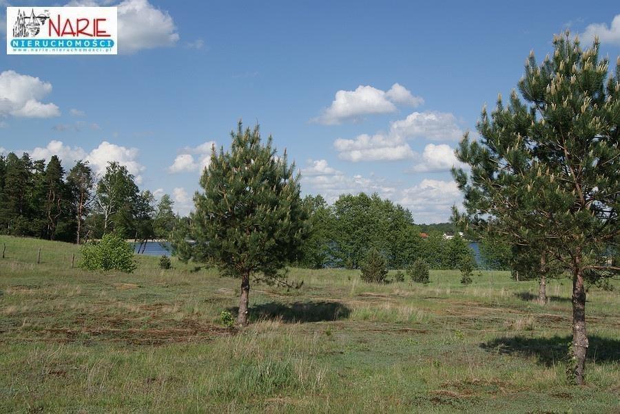 Działka rekreacyjna na sprzedaż Ruś  44395m2 Foto 4