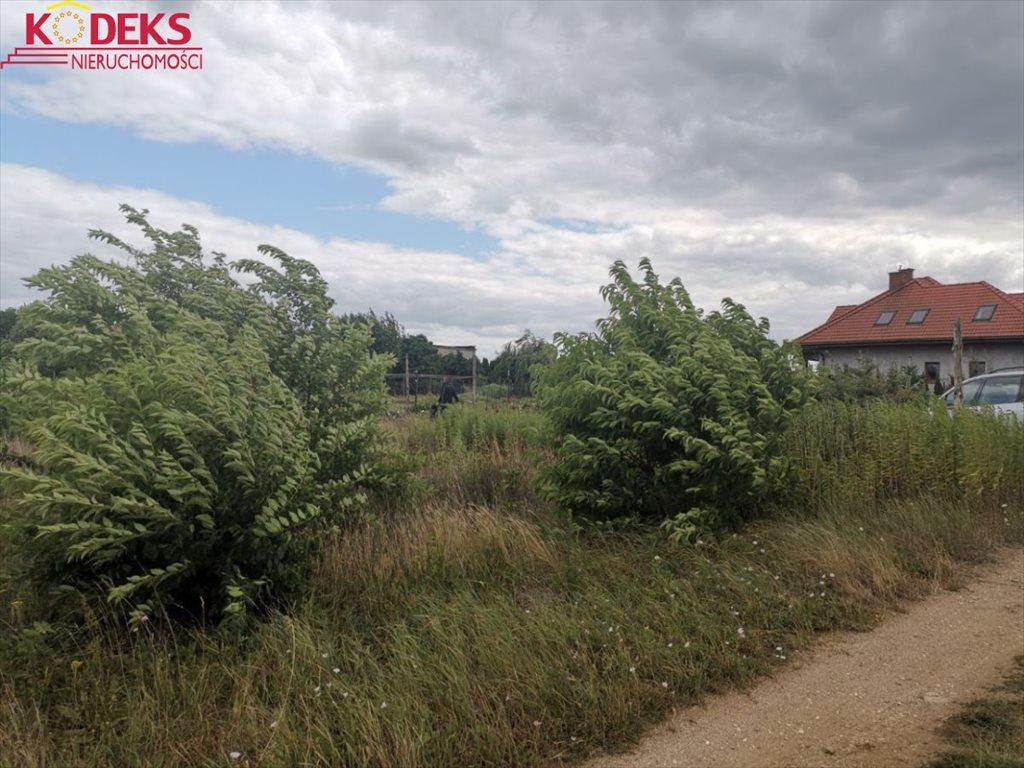 Działka budowlana na sprzedaż Skrzeszew  1709m2 Foto 4