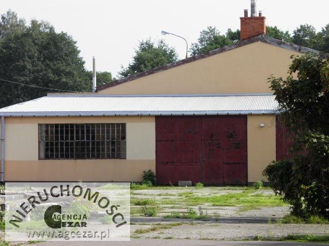 Lokal użytkowy na sprzedaż Mińsk Mazowiecki  500m2 Foto 2