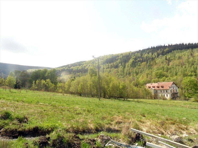 Działka budowlana na sprzedaż Świeradów-Zdrój, Świeradów Zd  8774m2 Foto 9