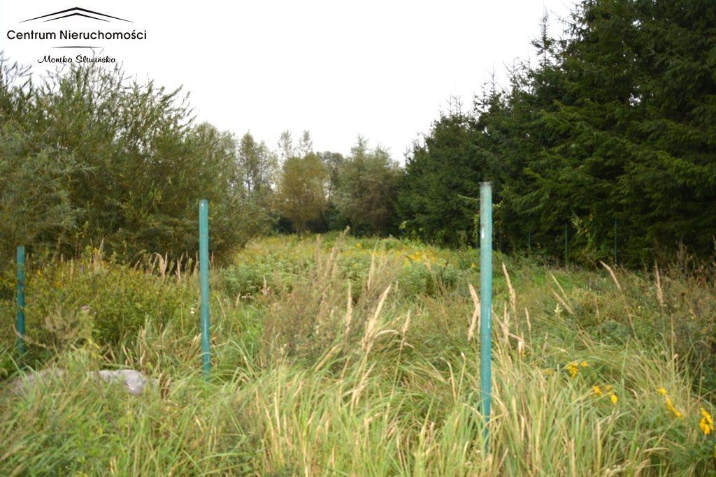 Działka rolna na sprzedaż Małe Łunawy  5000m2 Foto 1