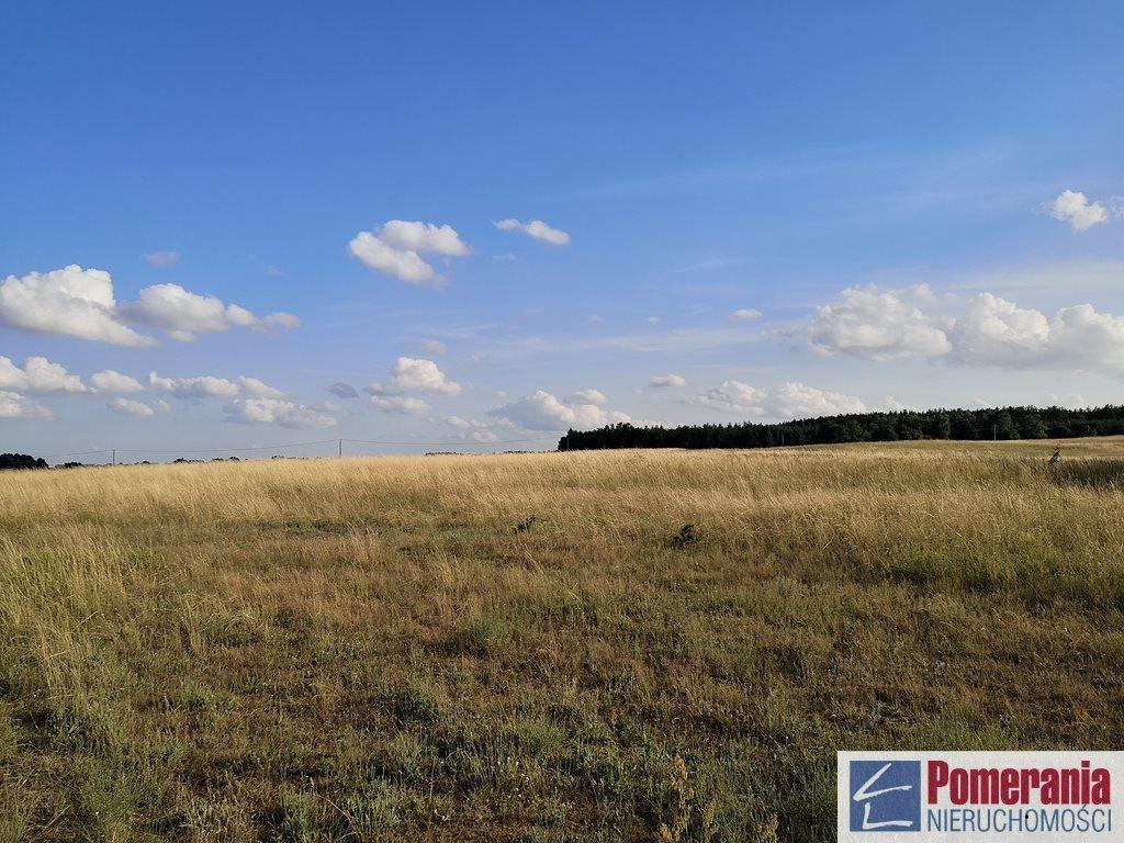 Działka rolna na sprzedaż Wąwelnica  37300m2 Foto 6