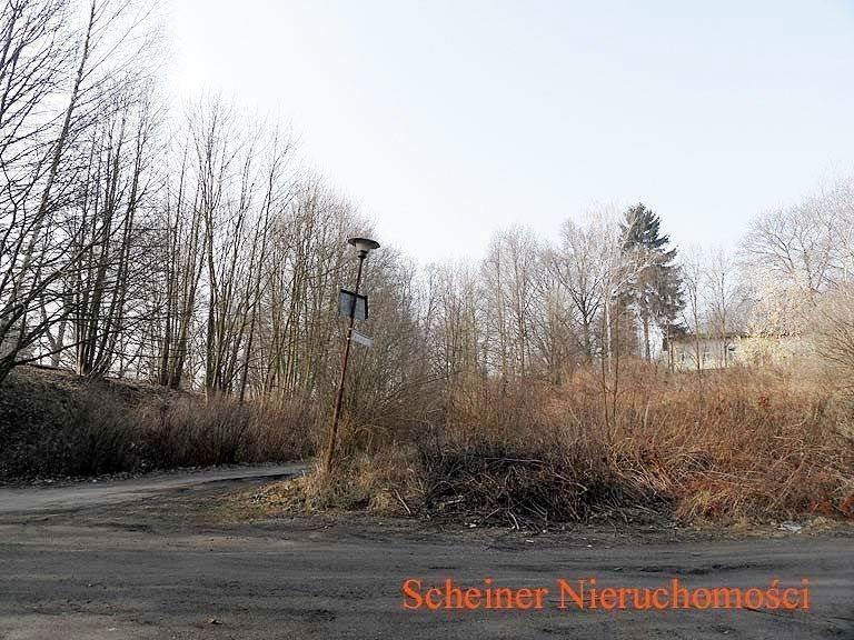 Działka budowlana na sprzedaż Lwówek Śląski, poza centrum  1700m2 Foto 4