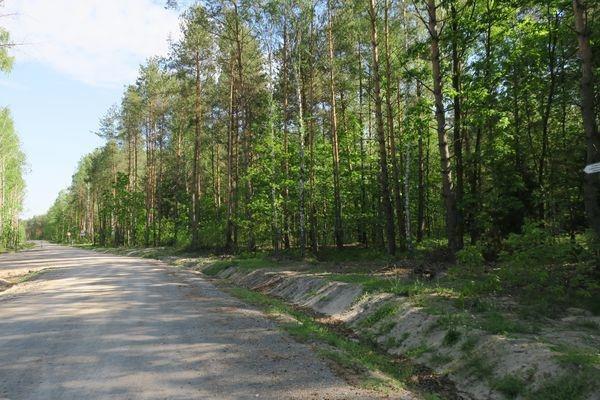 Działka rolna na sprzedaż Słupica  8100m2 Foto 11
