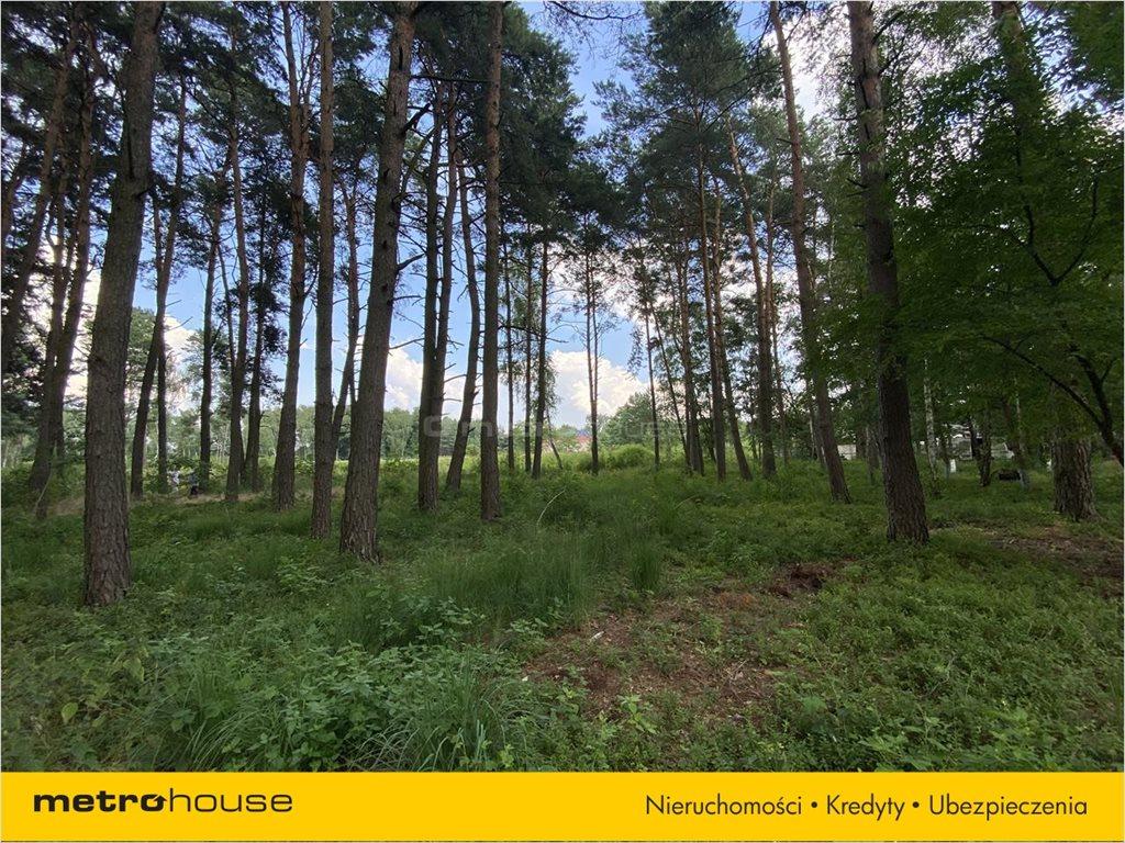 Działka leśna na sprzedaż Władysławów, Lesznowola  3128m2 Foto 4