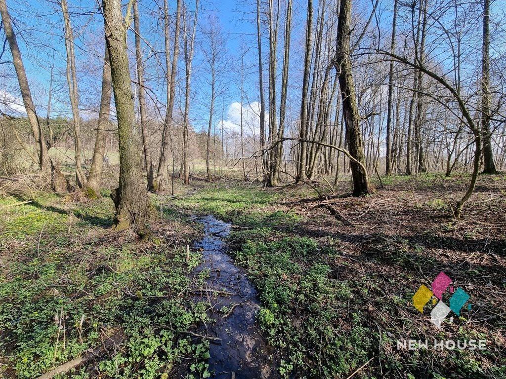 Działka rolna na sprzedaż Miłogórze  19700m2 Foto 1