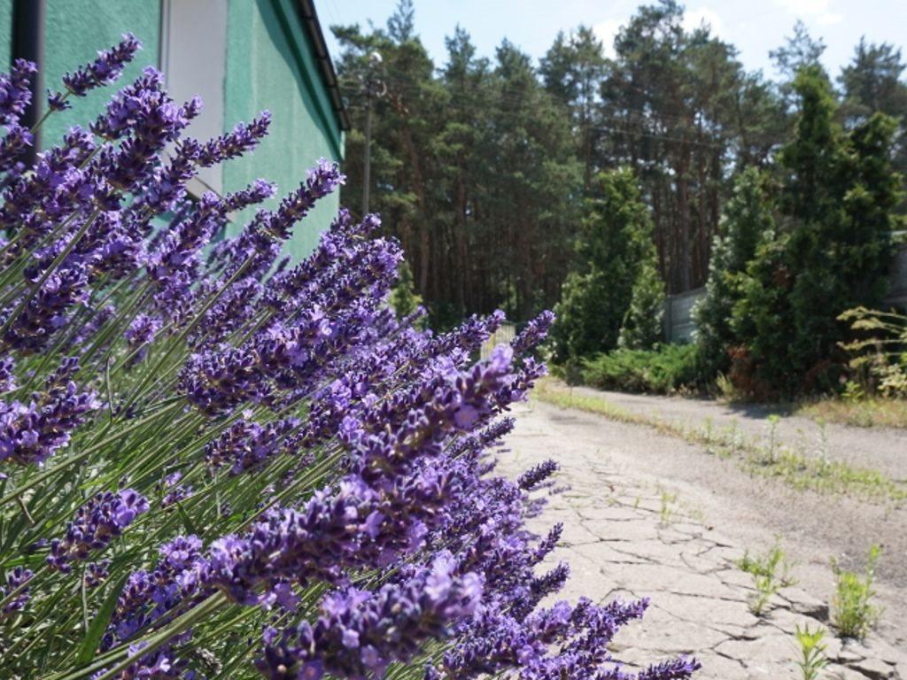 Dom na sprzedaż Daszewice, Szkolna  105m2 Foto 1